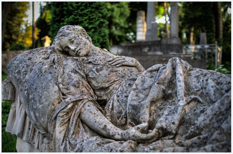 Лычаковское кладбище фото